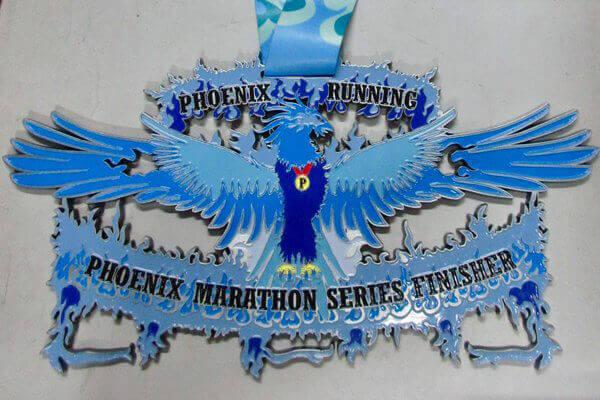 Icebird Series