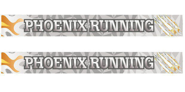Silver Phoenix Run