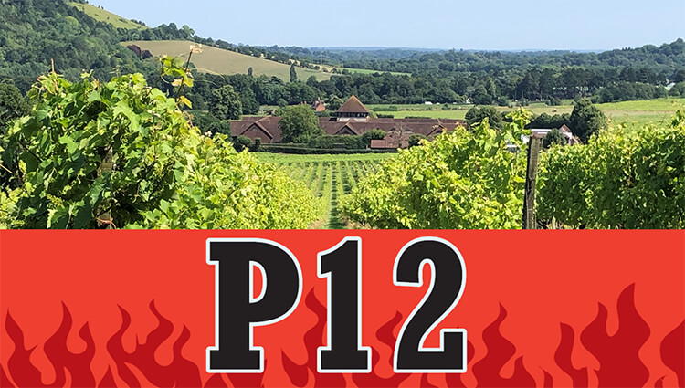 P12 - The Longest Attended Day